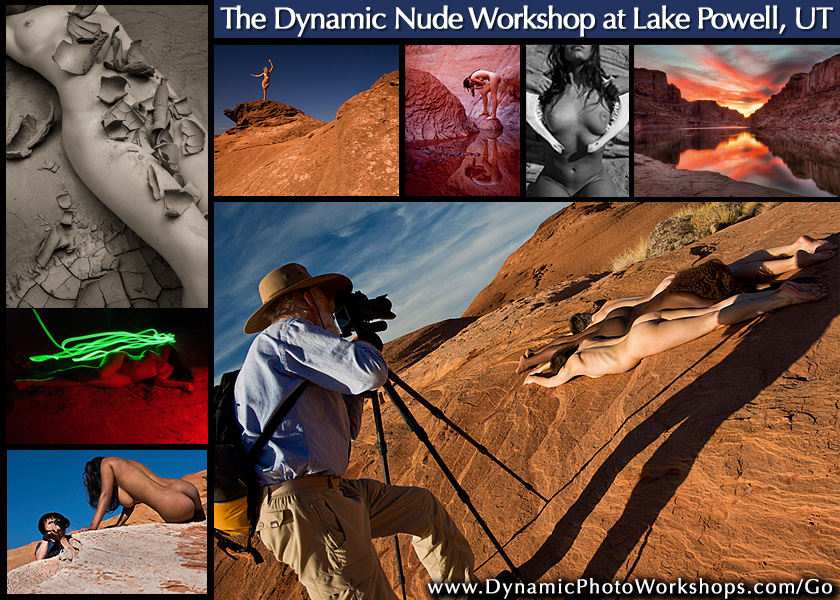 TheDynamicNude2014
