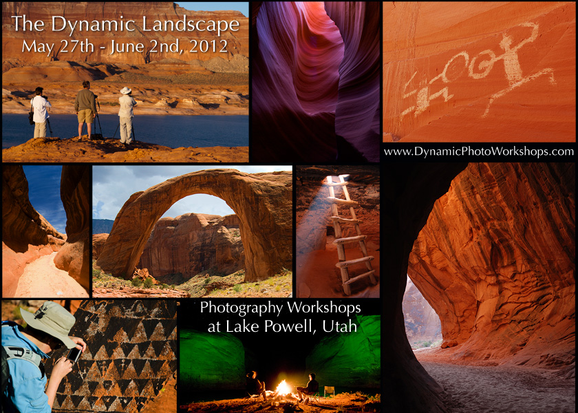 The Dynamic Landscape